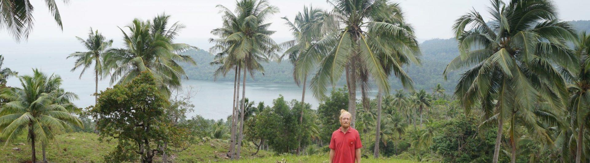 Nils-Erik och palmer