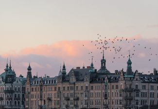 Komvux på distans i Stockholm